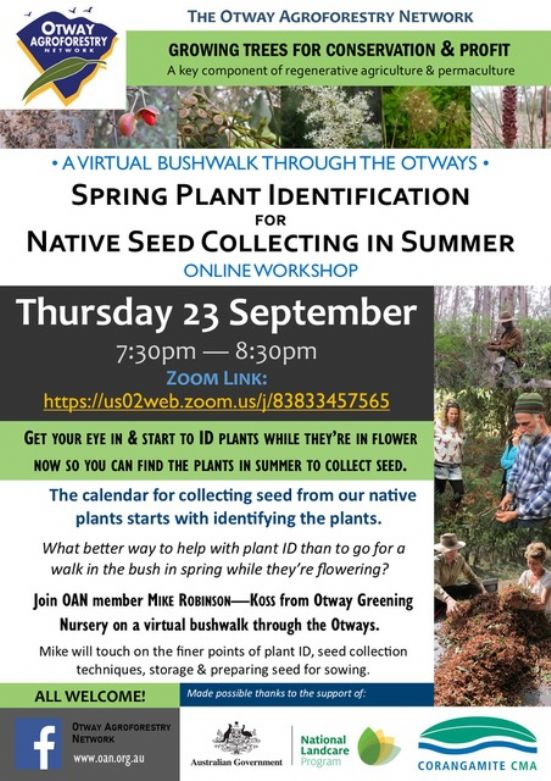 OAN_ONLINE_PLANT_ID__AND__SEED_COLLECTING_WORKSHOP_23-9-21.JPEG.JPG